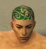 File:Monk Elite Kurzick Armor M dyed head front.jpg