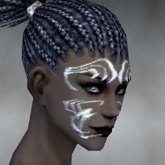 File:Necromancer Sunspear Armor F gray head side.jpg