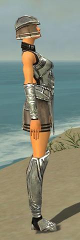File:Warrior Istani Armor F gray side.jpg
