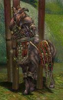 Maguuma Warlock