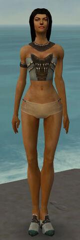 File:Dervish Primeval Armor F gray chest feet front.jpg