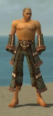 Monk Elite Kurzick Armor M gray arms legs front