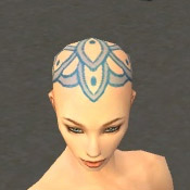 File:Monk Elite Luxon Armor F dyed head front.jpg