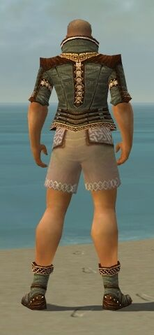 File:Monk Elite Kurzick Armor M gray chest feet back.jpg