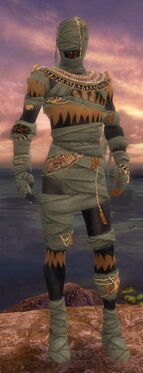 Ritualist Ancient Armor M gray front