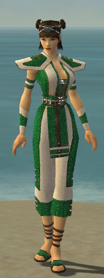 File:Monk Elite Saintly Armor F dyed front.jpg