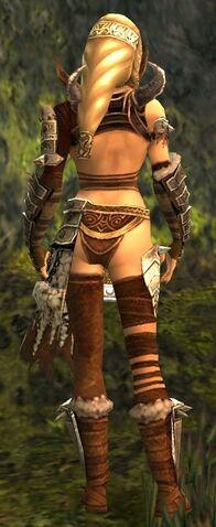 File:Jora Armor Brotherhood Back.jpg