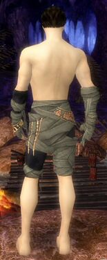 Ritualist Ancient Armor M gray arms legs back