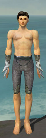 File:Elementalist Iceforged Armor M gray arms legs front.jpg