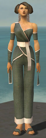 File:Monk Ascalon Armor F gray front.jpg