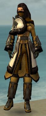 Ranger Norn Armor F dyed front