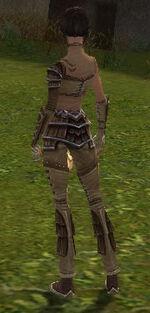 Acolyte Jin Armor Starter Back