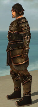 Warrior Shing Jea Armor M dyed side