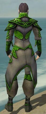 File:Elementalist Monument Armor M dyed back.jpg