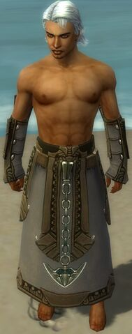 File:Dervish Asuran Armor M gray arms legs front.jpg