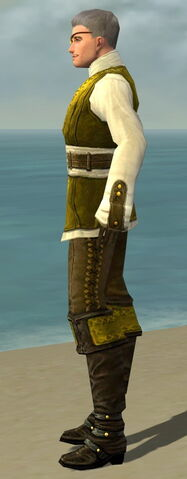 File:Mesmer Monument Armor M dyed side.jpg