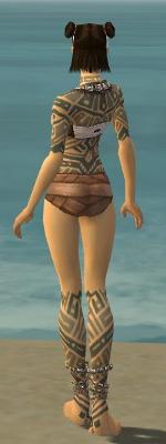 File:Monk Labyrinthine Armor F gray chest feet back.jpg