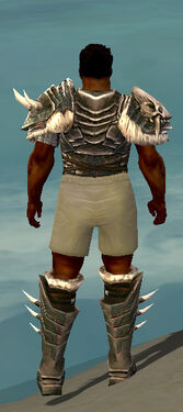 Warrior Norn Armor M gray chest feet back