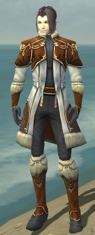 File:Elementalist Norn Armor M dyed front.jpg