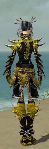 File:Necromancer Elite Luxon Armor F dyed back.jpg