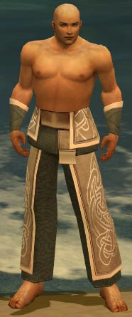 File:Monk Tyrian Armor M gray arms legs front.jpg