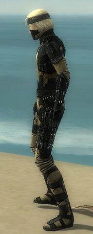 File:Assassin Kurzick Armor M dyed side.jpg