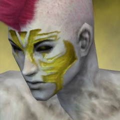 File:Necromancer Elite Luxon Armor M dyed head left.jpg