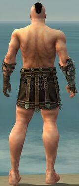Warrior Elite Gladiator Armor M gray arms legs back