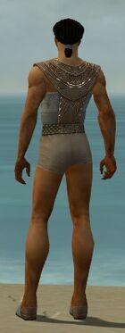Dervish Vabbian Armor M gray chest feet back