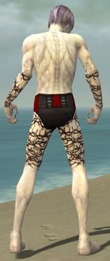 Necromancer Elite Scar Pattern Armor M gray arms legs back