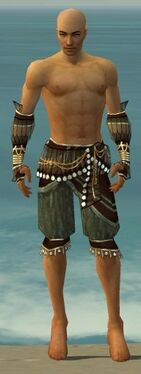 Ritualist Vabbian Armor M gray arms legs front