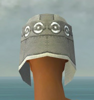 File:Warrior Ascalon Armor F gray head back.jpg