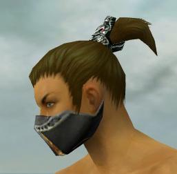 File:Assassin Exotic Armor M gray head side.jpg