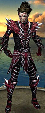 Necromancer Luxon Armor M gray chest feet front