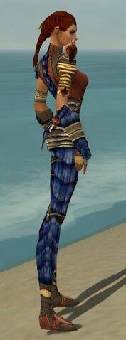 File:Ranger Elite Drakescale Armor F dyed side.jpg