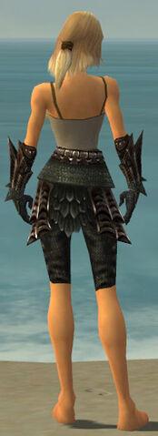File:Warrior Elite Dragon Armor F gray arms legs back.jpg