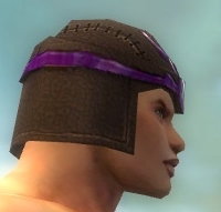 File:Warrior Gladiator Armor M dyed head side.jpg