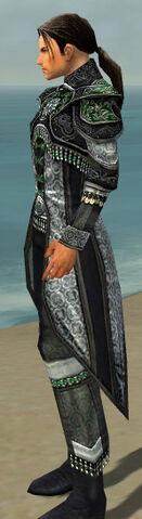 File:Elementalist Elite Luxon Armor M dyed side.jpg