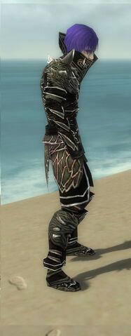 File:Necromancer Elite Luxon Armor M gray side.jpg