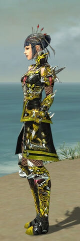 File:Necromancer Elite Canthan Armor F dyed side.jpg