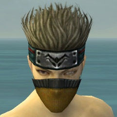 File:Assassin Ancient Armor M dyed head front.jpg