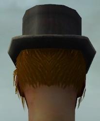 File:Dapper Tuxedo M dyed head back.jpg