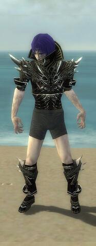 File:Necromancer Elite Luxon Armor M gray chest feet front.jpg