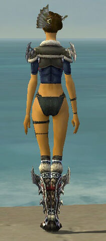 File:Assassin Norn Armor F gray chest feet back.jpg