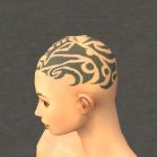 File:Monk Elite Kurzick Armor F gray head side.jpg