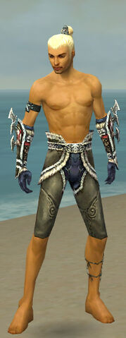 File:Assassin Norn Armor M gray arms legs front.jpg