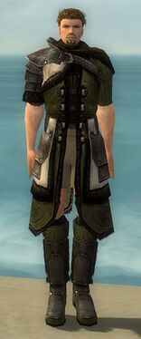 Ranger Norn Armor M gray chest feet front