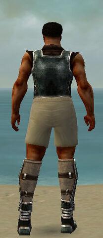 File:Warrior Istani Armor M gray chest feet back.jpg