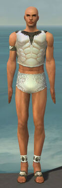 Paragon Istani Armor M gray chest feet front