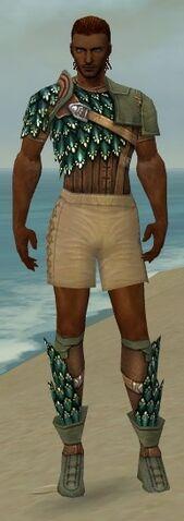 File:Ranger Drakescale Armor M gray chest feet front.jpg